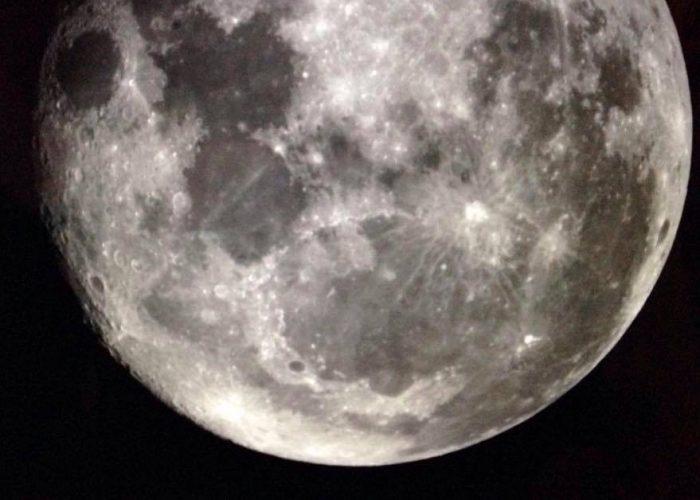 enraizamiento-luna-llena